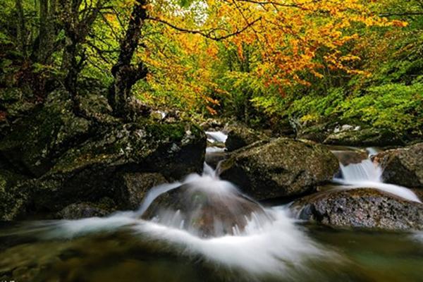 cascadas de salenques