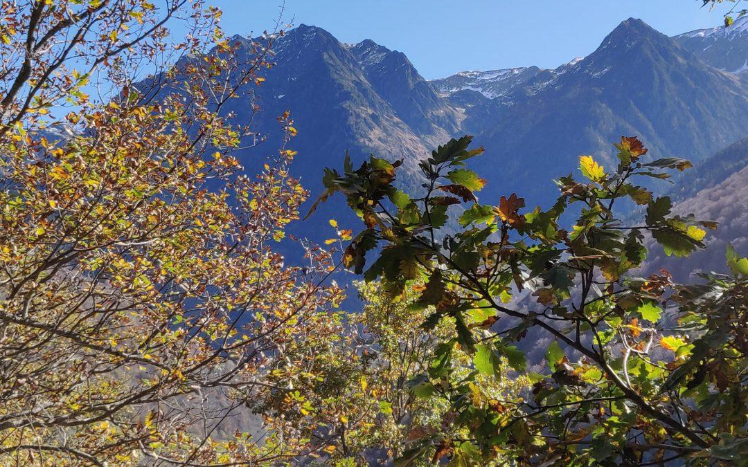 otoño valle de aran